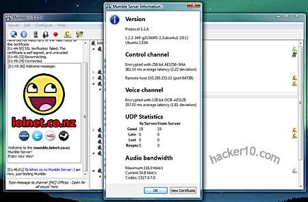 Mumble server encryption details
